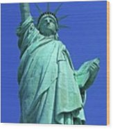 Statue Of Liberty 17 Wood Print