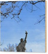 Statue Of Liberty Back View  Wood Print