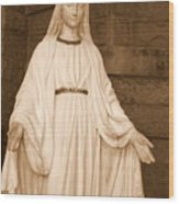 Statue Of Mary At Sacred Heart In Tampa Wood Print