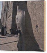Statue Of The Bird God, Horus Wood Print by Richard Nowitz