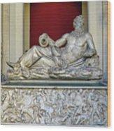 Statue Of The Greek River God Tiberinus At The Vatican Museum Wood Print