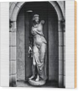 Statue Under Cover Wood Print