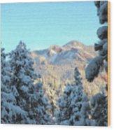Staunton Mountain Wood Print by Steven Michael
