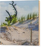 Stay Off Dunes Wood Print