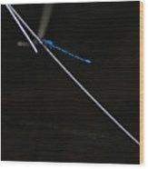 Stealth Blue Wood Print