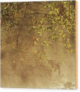 Steam Mist Wood Print