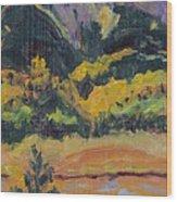 Steamboat Lake State Park Sand Mountain From Bridge Island Wood Print by Zanobia Shalks