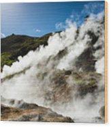 Steaming Hot Springs In Reykjadalur Iceland Wood Print