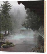 Steamy Splendor 02 Wood Print
