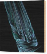 Steel Feathers Wood Print