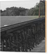 Steel Rails Wood Print
