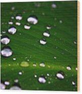 Steel Rain Wood Print