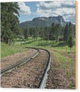 Steel Tracks In The Black Hills Wood Print