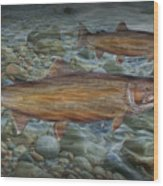 Steelhead Trout Fall Migration Wood Print