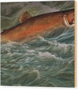 Steelhead Trout Fish No.143 Wood Print