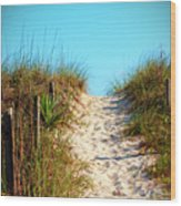Steep Beach Path Wood Print