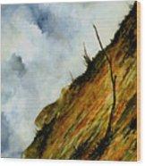 Steep Slope Wood Print