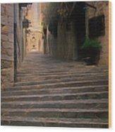 Steep Steps Of Girona Wood Print