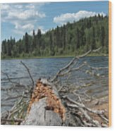 Steepbanks Lake The Fallen Wood Print