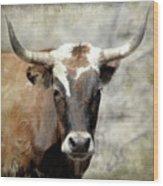 Steer Bull Wood Print