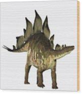 Stegosaurus Profile Wood Print