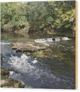 Steinhatchee Falls Wood Print