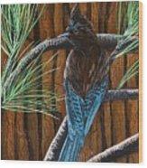 Stellar Jay Wood Print by Jennifer Lake