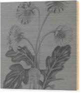 stems of gerbera from Rajbhavan Dehradun Wood Print