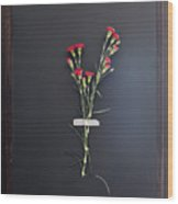 Stems Of Red Flowers Taped To Chalkboard Wood Print