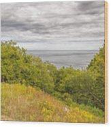 Stenshuvud Sea View Wood Print
