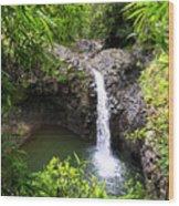 Step Falls Pipiwail Trail 3 Wood Print