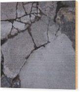 Step On A Crack 3 Wood Print