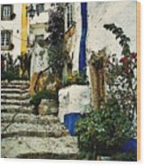 Step Street In Obidos Wood Print