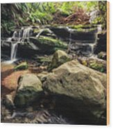 Stepping Cascade - Leura, Blue Mountains, Australia. Wood Print