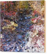 Stepping Stones At Autumn Forest Wood Print