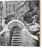 Steps Along The Wissahickon Wood Print