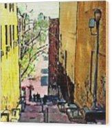 Steps At 187 Street Wood Print