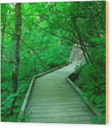 Steps Into Paradise Wood Print