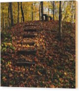 Steps To Bench Wood Print