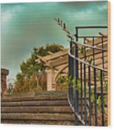Steps To Jupiter Wood Print