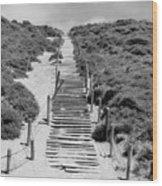 Steps To The Beach Wood Print