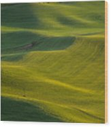 Steptoe Butte 11 Wood Print