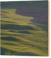 Steptoe Butte 12 Wood Print