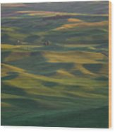 Steptoe Butte 13 Wood Print
