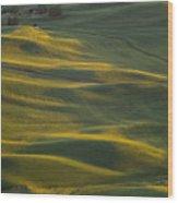 Steptoe Butte 14 Wood Print