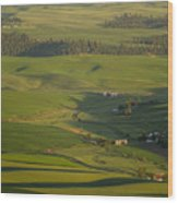 Steptoe Butte 3a Wood Print