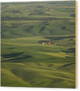 Steptoe Butte 5 Wood Print