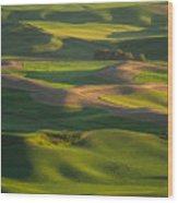 Steptoe Butte Wood Print