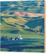 Steptoe View Wood Print