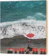 ...stessa Spiaggia... Stesso Mare...  ...the Same Beach... The Same Sea... Wood Print